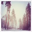 Winter in Finland — Stock Photo