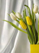 Tulips in a vase — Stock Photo