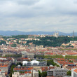 Постер, плакат: View of Lyon