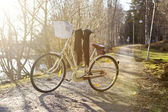 Bike in the park — Stock Photo