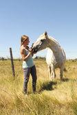 The girl stroking horse — Stock Photo