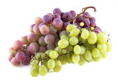 Bunch of grapes isolated on white background — Stock Photo