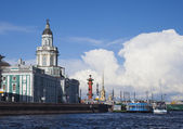 Russia. St. Petersburg. View of the Cabinet of Curiosities, the city islands and the Peter and Paul Fortress — Foto Stock