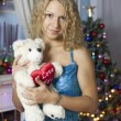 Girl in a blue dress with a gift on Christmas tree background — Stock Photo #42730487