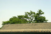 Roof in a temple, antique buildings, north china — Stock Photo