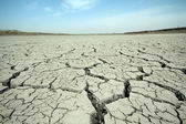 Cracks in the land — Stock Photo