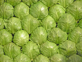 Cabbage put together — Stock Photo