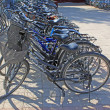 Rows of bicycles - Stock Photo