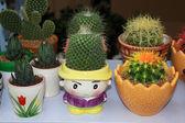 Embalado em vaso de plantas dos desenhos animados de flores — Fotografia Stock