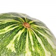 Melons vegetables — Stock Photo #21169639