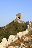 Original ecology of the great wall — Stock Photo