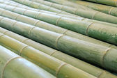 Dry bamboo stacked together — Stock Photo