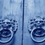 Metal beast head on the door panels in Phoenix Town, china — Stock Photo