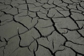 Arid lands with cracks — Stock Photo