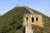 The original ecology of the great wall — Stock Photo