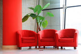 Red sofa and green flowers in the hall — Stock Photo