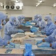 Stock Photo: Workers in food processing production line