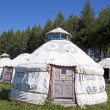 Yurt in the grassland — Stock Photo