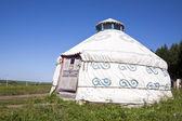Yurt in the grassland — Stock Photo