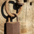 Rusty lock on the wooden door — Stock Photo #35386483