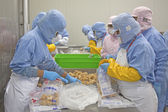 Workers in food processing production line — Stock Photo