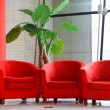 Red sofa and green flowers in the hall — Stock Photo #35519743