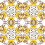 Abstract floral kaleidoscope seamless pattern — Stock Photo