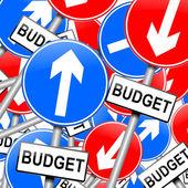 Budget concept. — Stock Photo