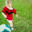 Little soccer player — Stock Photo #19297873