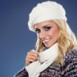 Beautiful young womwith beret and scarf around neck — Stock Photo #39470947