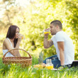 Young couple having a picnic — Stock Photo