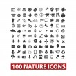 Stock Vector: 100 nature icons set, vector