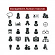 Human resources, management organization icons, signs set, vector — Grafika wektorowa