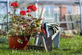 ガーデン ツール — ストック写真