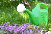 Garden watering can — Stock Photo