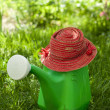 Garden watering can and a hat — Stock Photo #26519909
