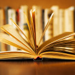 Hardcover book with fanned pages — Stock Photo #28559711