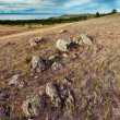 Landscape with rocks - Stok fotoraf