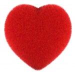 Постер, плакат: Fluffy heart