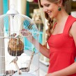 Woman looking at birds - Stock Photo
