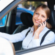 Woman driving the car and talking on the phone - Stock Photo