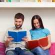 Couple sitting on sofa and reading books — Stock Photo #22169939