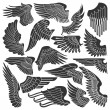 Stock Vector: Set sketches of wings