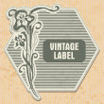 Vintage label — Stock Vector #13840659