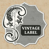 Vintage-label — Stockvektor