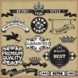 Royalty-Free Stock Vektorgrafik: Vintage Calligraphic Design Elements Vector
