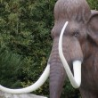 Stock Photo: Woolly Mammoth - Mammuthus primigenius