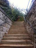 Stairway Guardian — Stock Photo
