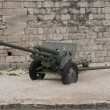 Budapest Artillery — Stock Photo
