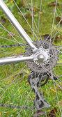 自転車の後部車輪 — ストック写真